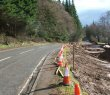 Realignment of the A81
