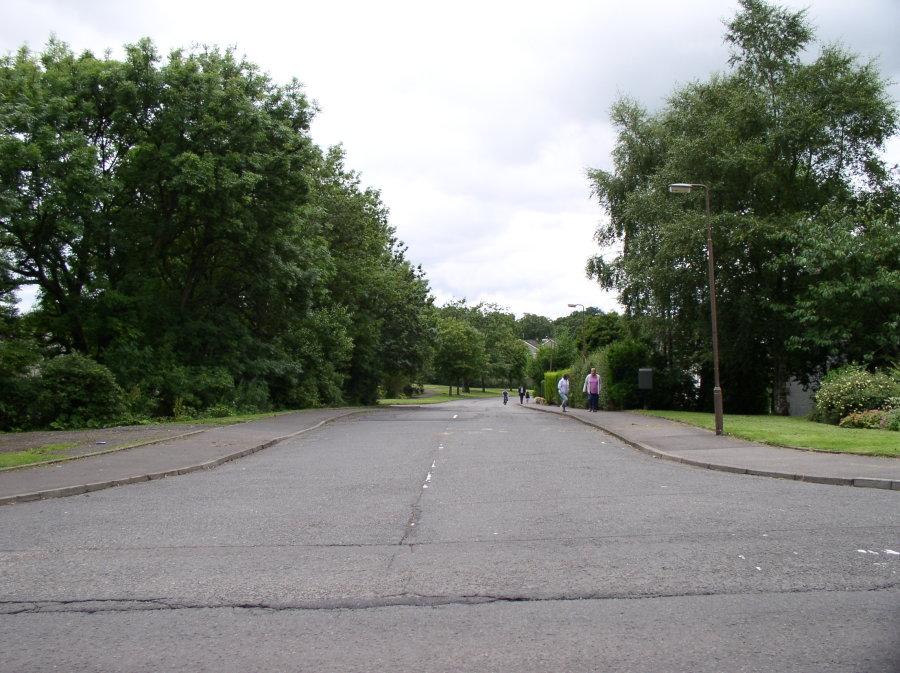 Beech Drive