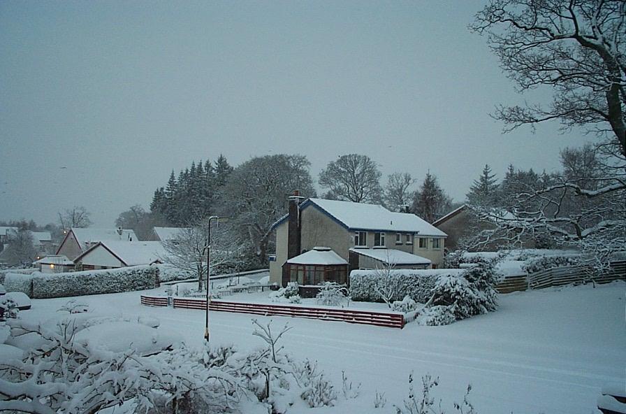 Birch Road