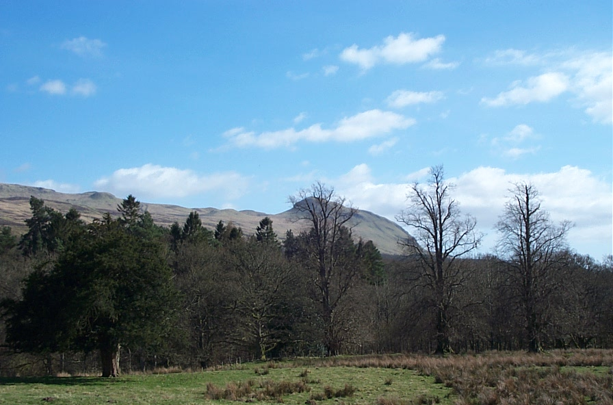 Crow Hill, looking towards Dumgoyne