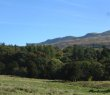 Crow Hill, with the Glen and Campsies Fells in the background