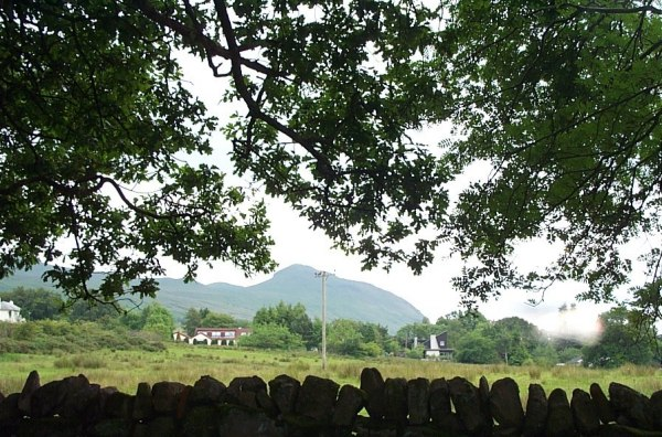 Dumgoyne from Killearn Glen