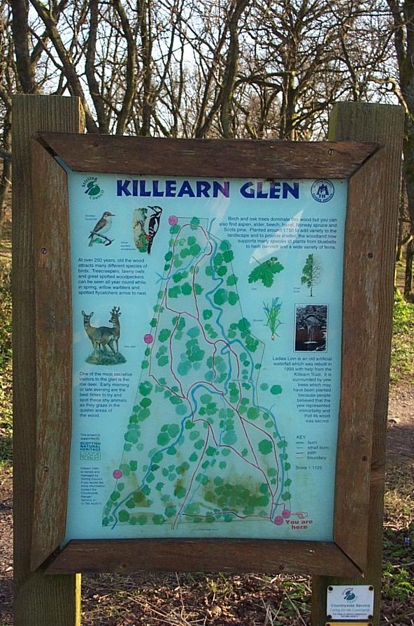 Killearn Glen