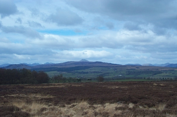 View from the Campsie Fells