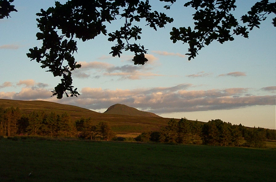 Dumgoyne from Ibert Woods