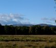 Ben Lomond from Station Road