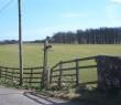 West Highland Way, near to Gartness